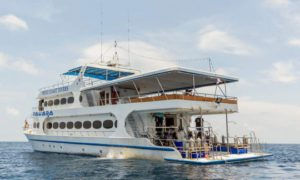 MV Pawara - Andaman Sea Liveaboards