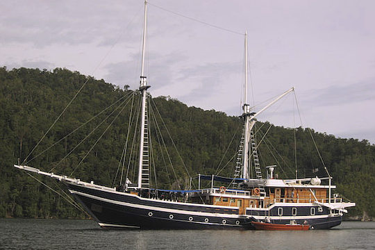 MSY Seahorse Indonesia Liveaboard Dive Boat