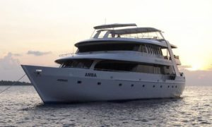 MV Amba - Maldives Liveaboard Diving