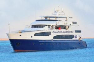 Maldives Aggressor II - Maldives Aggressor II