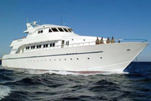 MY Excellence - Red Sea Liveaboard Diving