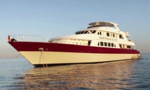 MY Emperor Elite - Red Sea Liveaboard Diving