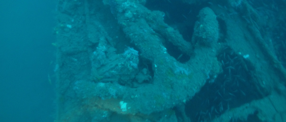 Kyo Maru Anchor - 69 meters, Subic Bay Wrecks