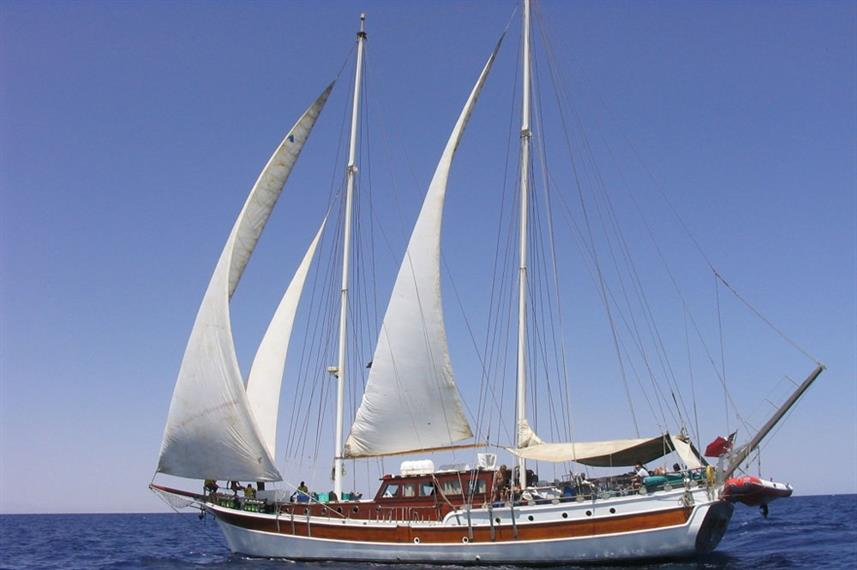 MSY Elegante Djibouti Liveaboard Dive Boat