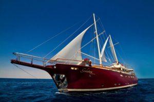 MV Galatea Seychelles Liveaboard