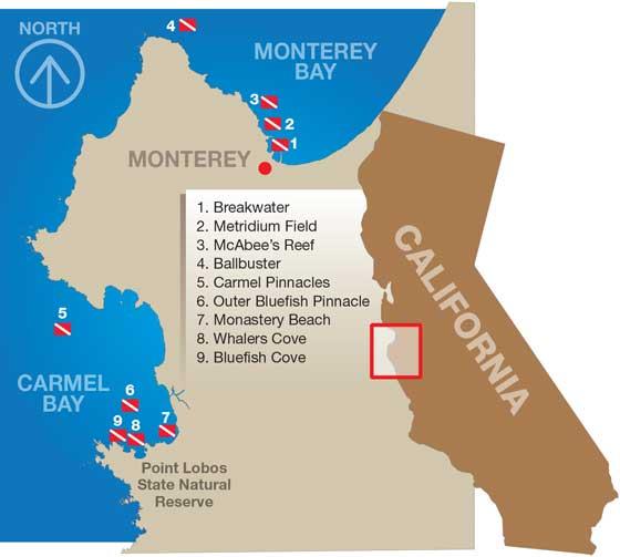 Monterey Bay Dive Sites Map