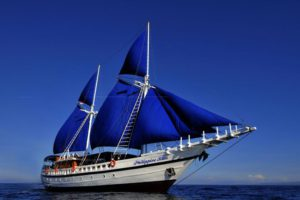 SY Philippine Siren Philippines Liveaboard Diving