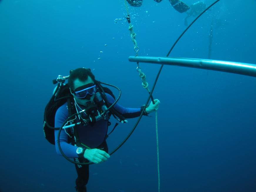 Deco Stop Diver