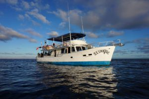 El Duque - Sea of Cortez Liveaboard Diving