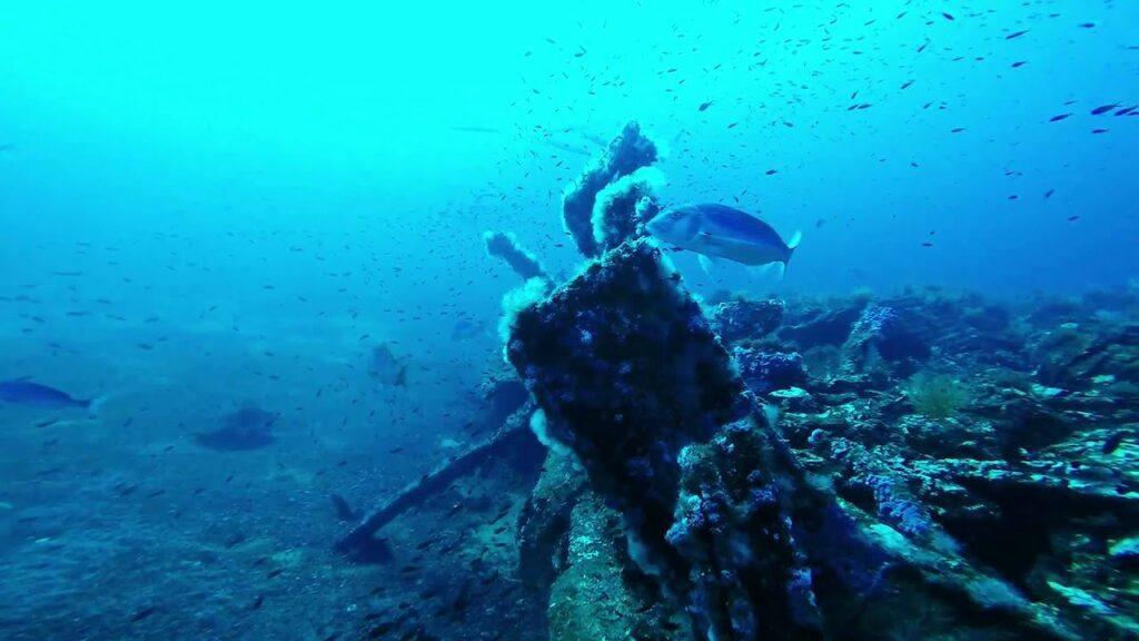 Malakoff Wreck - Menorca, Spain