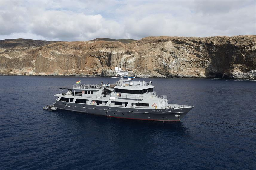 Socorro Vortex - Socorro Islands Liveaboard