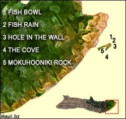 Molokai Dive Sites Map