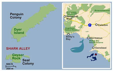Shark Alley Map - Gansbaai South Africa